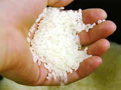 おいしいお米を産地から、特に選んだ銘柄米だけをお届けいたします。